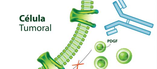 Celula-tumoral_home