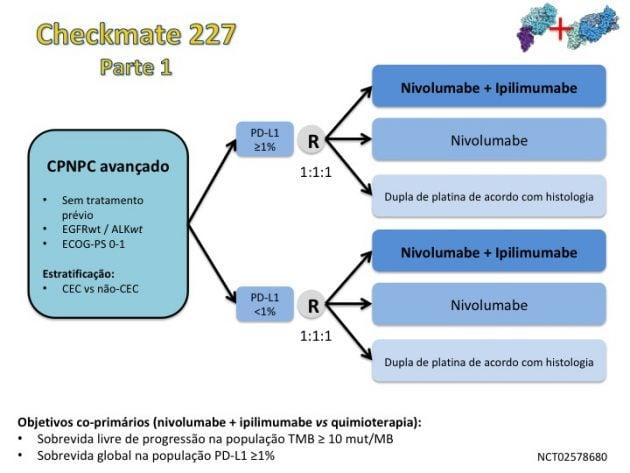 MOC Noticias 23 - Novas perspectivas no algoritmo do tratamento do câncer de pulmão 2