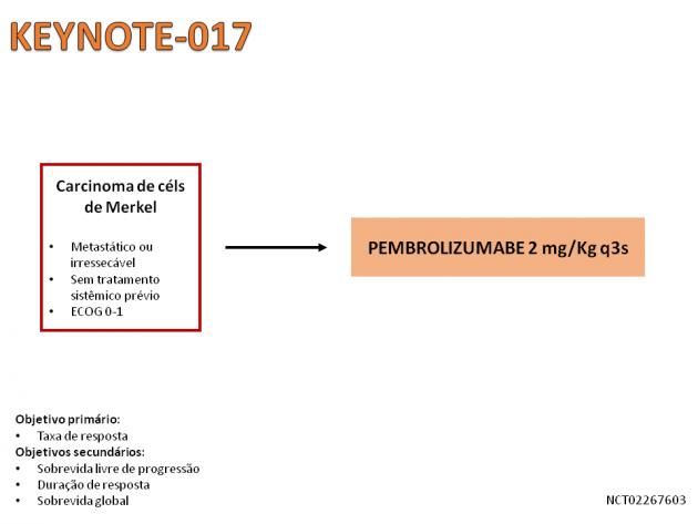 19_Noticia55_Fig01