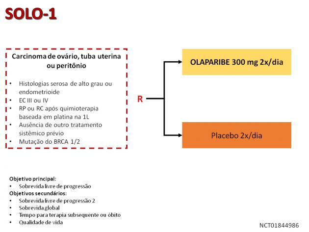 19_Noticia60_Fig01