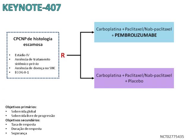 19_Noticia63_Fig01