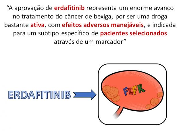 19_Noticia70_Fig02