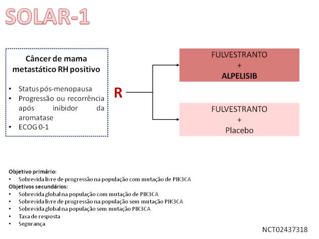 19_Noticia77_Fig01