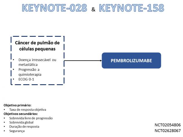 MOC Noticias 81_01