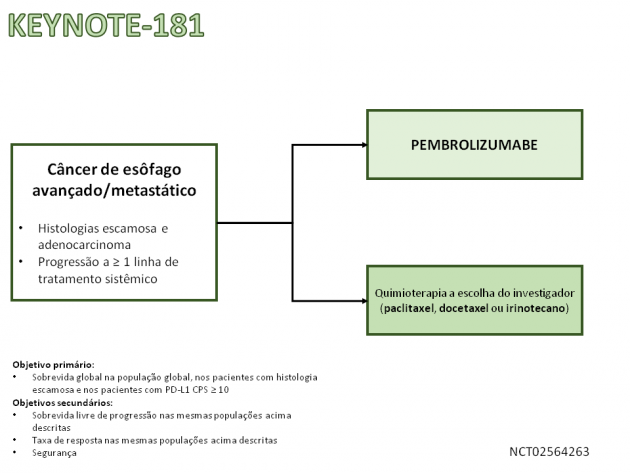 Noticia 86_Slide2