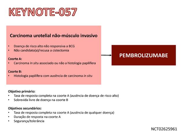 20_Noticia112_Fig01-630x473